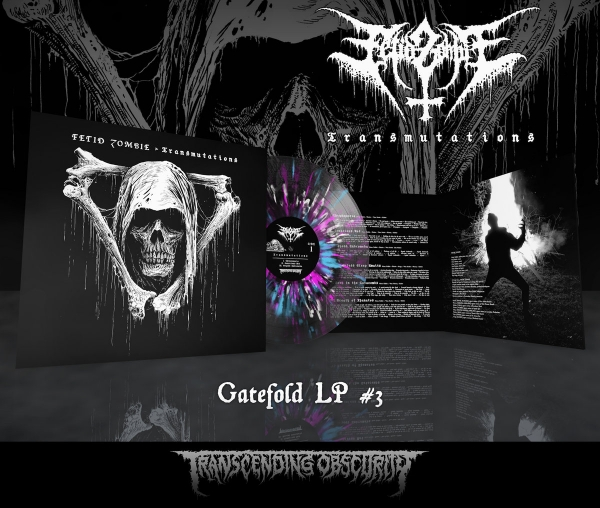 Transmutations LP