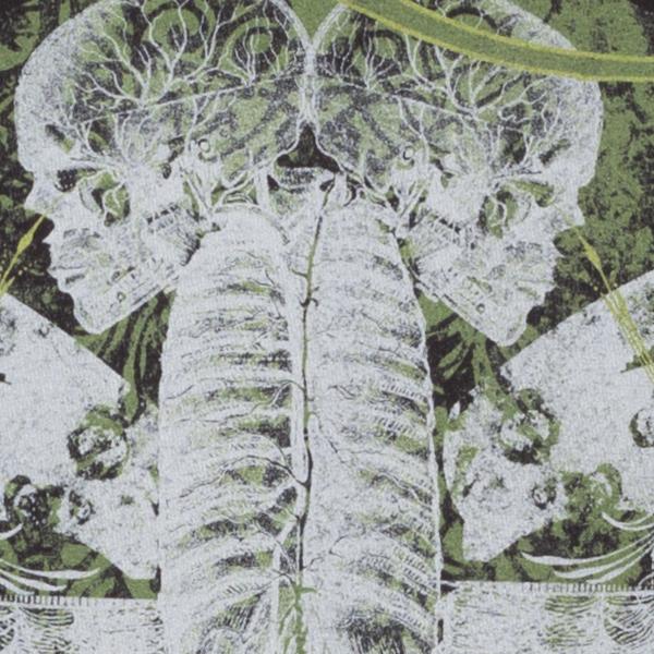Skulls/Wings/Knives