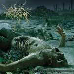 The Anthropocene Extinction