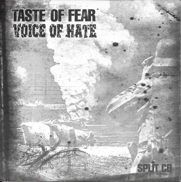 Taste of Fear | Voice of Hate Split CD