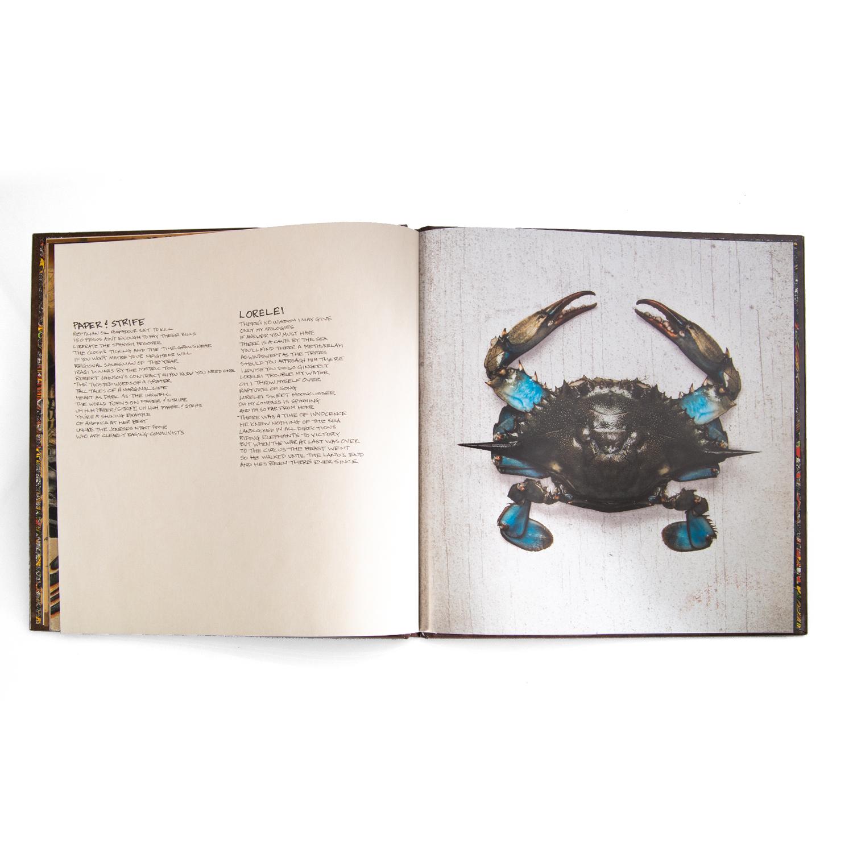 Book Of Bad Decisions (Book/CD)