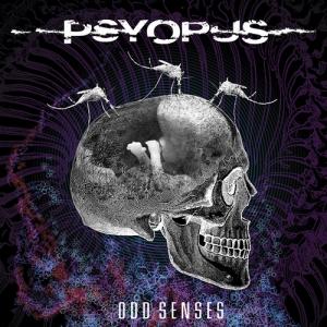 Odd Senses
