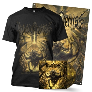 Depths of Veracity LP + Tee Bundle