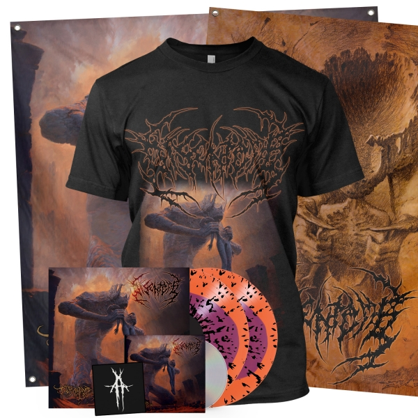 The Decaying Light Collector's Bundle