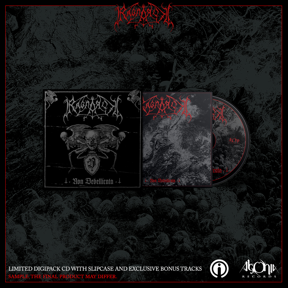 Non Debellicata Limited CD + Tee Bundle