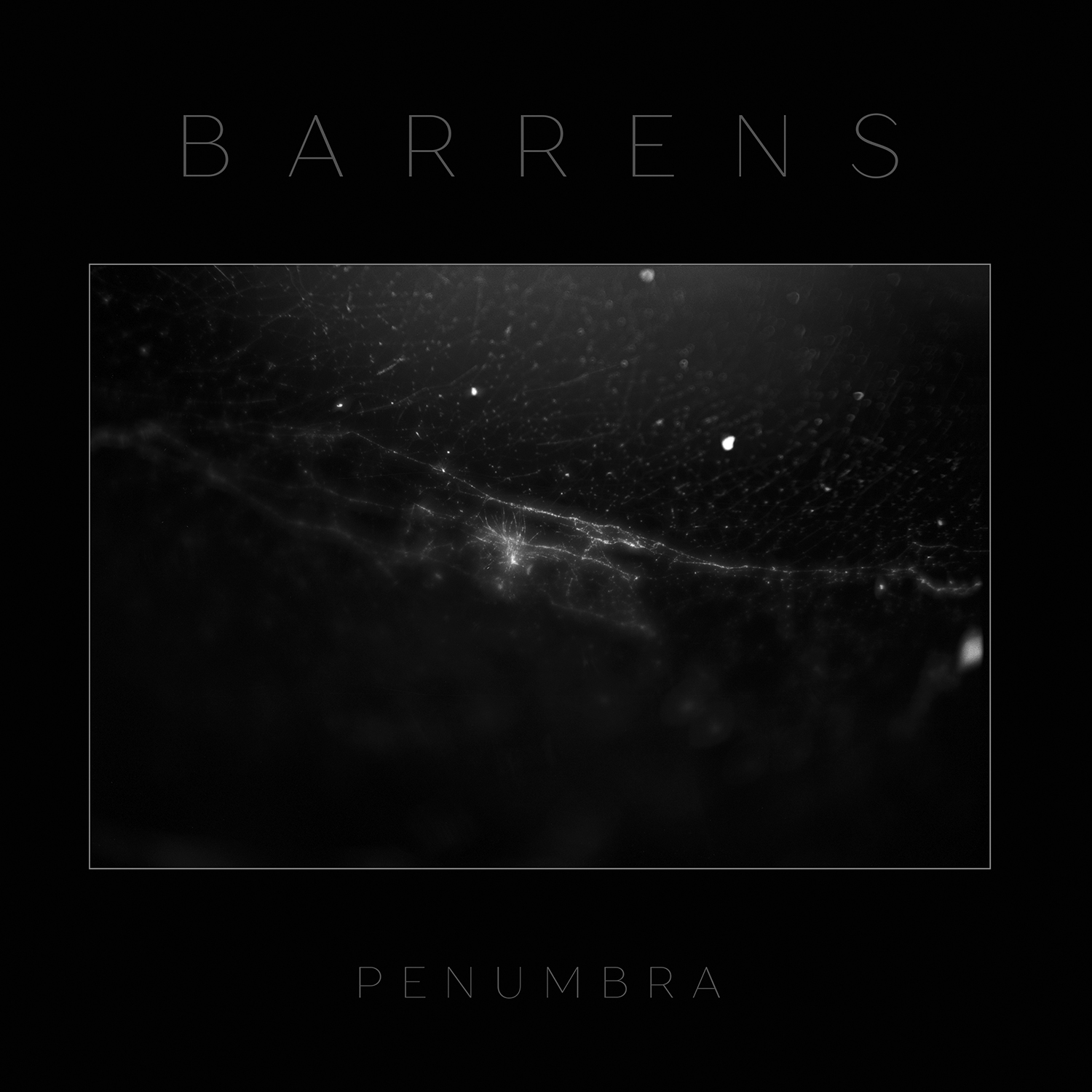 PENUMBRA Bundle
