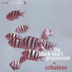 In The Fishtank: Vol. 11
