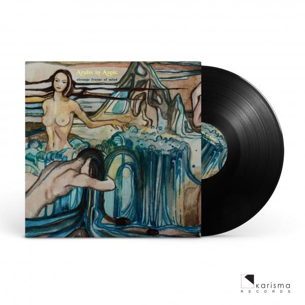 Strange Frame Of Mind (LP)