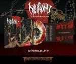 Pre-Order: Degenerations LP